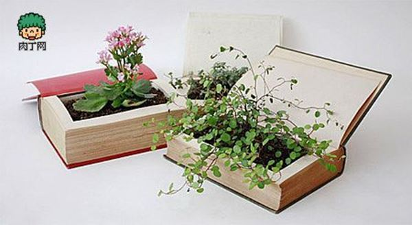 10+ Creative Plant Pot Ideas