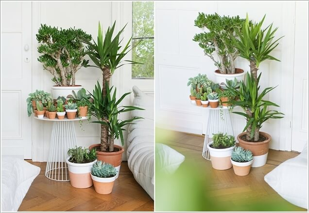 Creative Ideas How To Display Your Indoor Plants