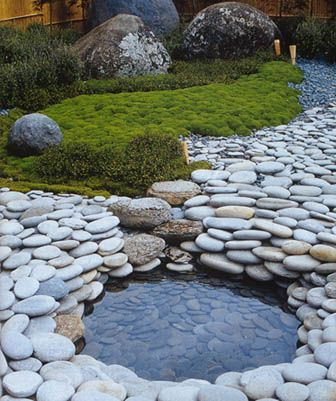 Backyard-Pond-18
