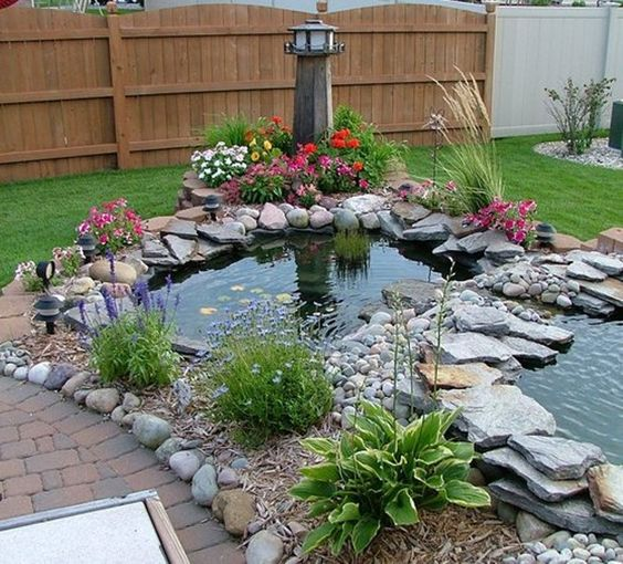 Backyard-Pond-19