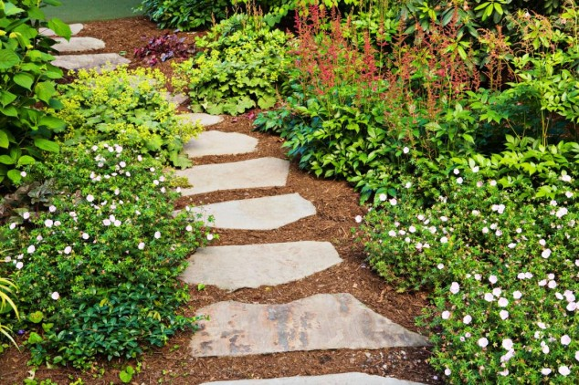 Charming Pathway 13