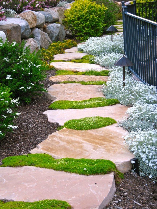 Charming Pathway 5