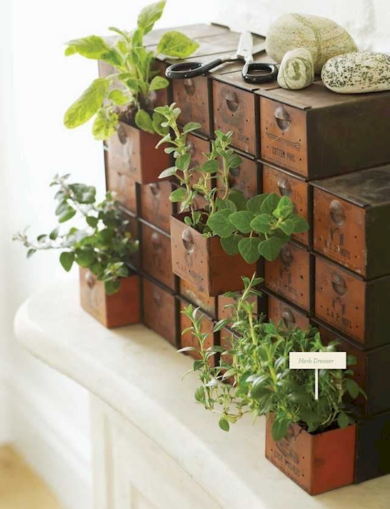 15+ DIY Containers For Planting