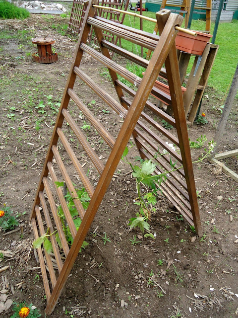 10 Diy Trellis Ideas For You Garden