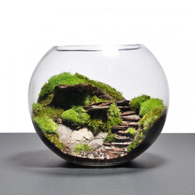 15 Miniature Terrariums Masterpieces