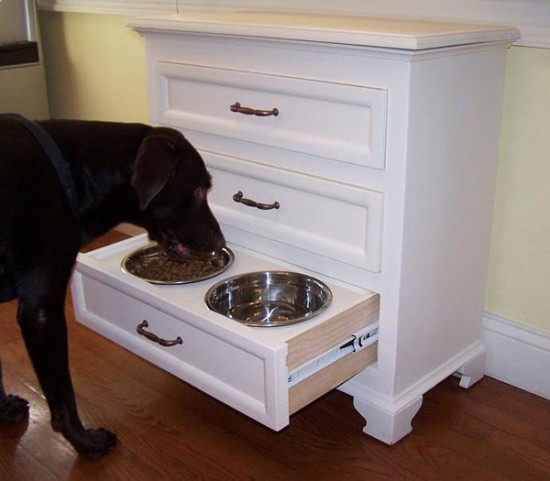 Dog Feeding Station5
