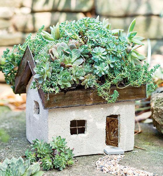Fairy Cottages 3