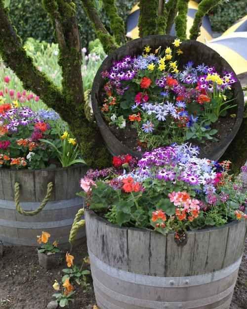 Flower Planters 16