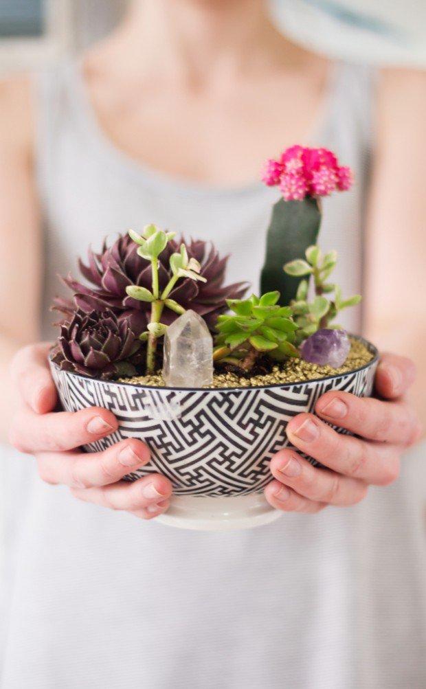 Mini-Cactus-Gardens-14