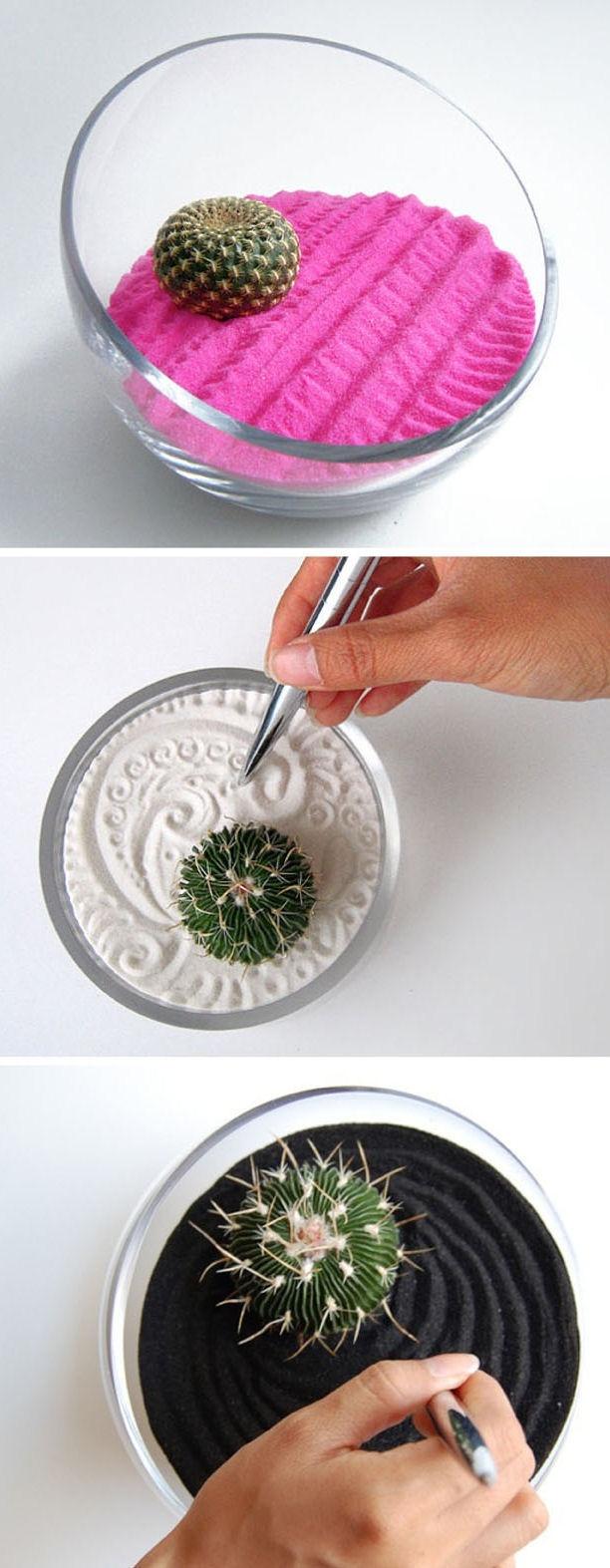 Mini-Cactus-Gardens-17