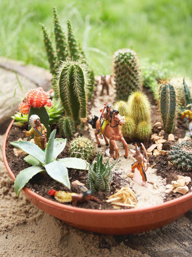 Mini-Cactus-Gardens-2