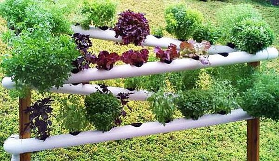 PVC Gardening Ideas and Projects PVC Verticle Planter2