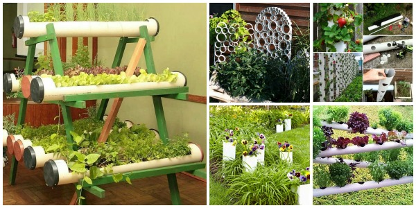 Excellent Diy Pvc Gardening Ideas And Projects With Gardening Ideas. Part 53