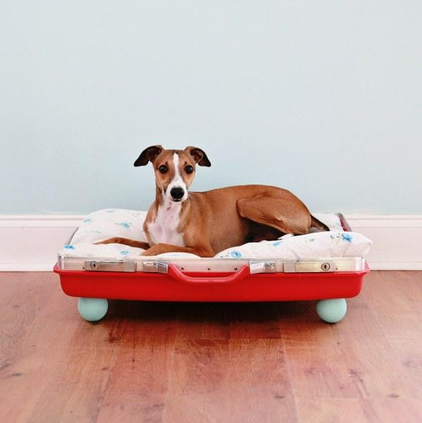 Pet Bed 20