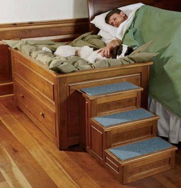 Pet Bed 32