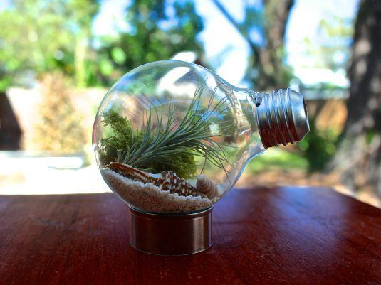 Recycle-Old-Light-Bulbs-1