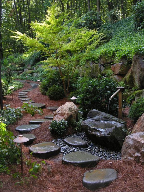 Stepping Paths 7