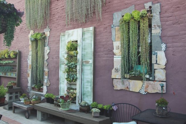 10+ Awesome DIY Succulent Frame