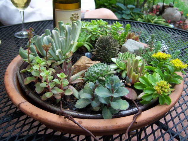 Succulents Garden Ideas 26 california dreaming 15 Awesome Succulent Garden Ideas