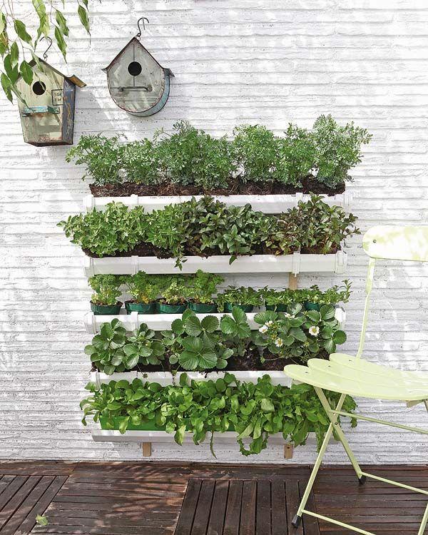 Vertical Vegetable Garden 1