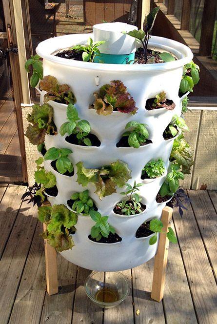 Vertical Vegetable Garden 11