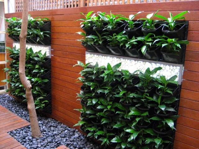 Vertical Vegetable Garden 16
