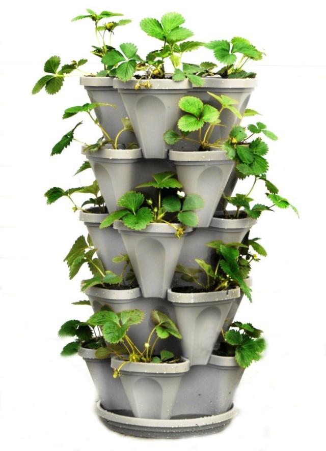 Vertical Vegetable Garden 20
