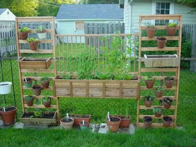 Vertical Vegetable Garden 23