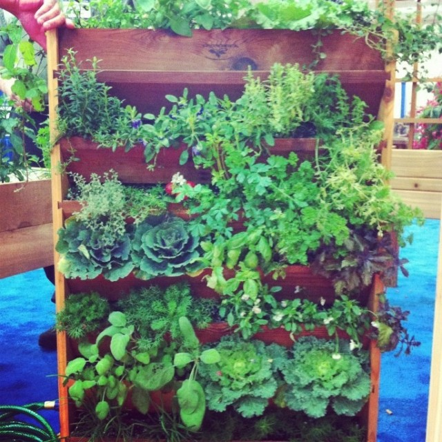 15 Creative Garden Ideas You Can Steal: 20+ Vertical Vegetable Garden Ideas