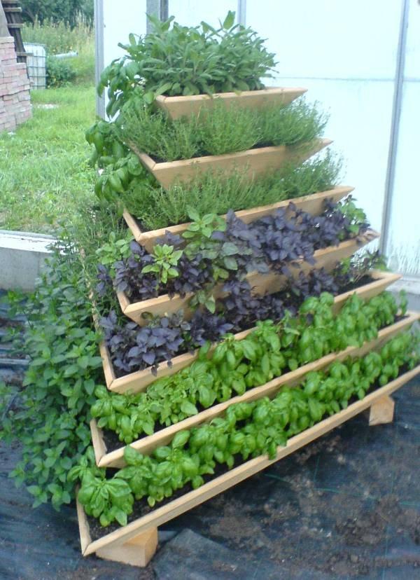 Vertical Vegetable Garden 6