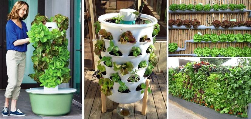 20 vertical vegetable garden ideas for Vegetable garden ideas for small spaces