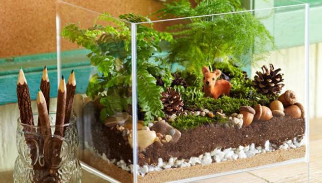 amazing unique terrarium ideas with picture of unique terrarium decor on design