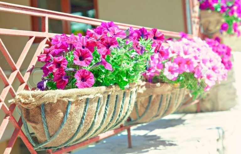 balcony-flower-boxes-6
