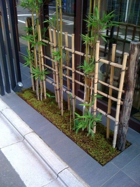 bamboo-tree-decorations-13