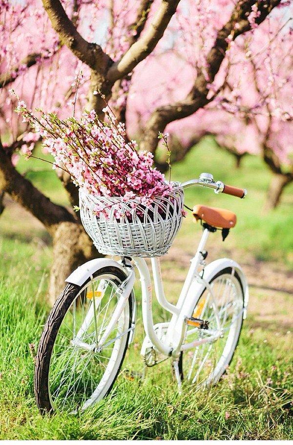 bike reuse ideas 14