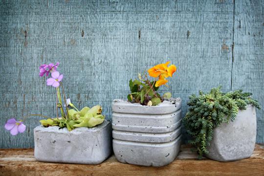 concrete planters 1