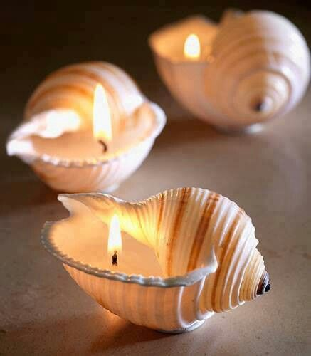 crafts-seashells-16