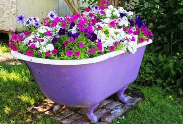 15+ Unique Flower Planters That Will Beautify Your Garden