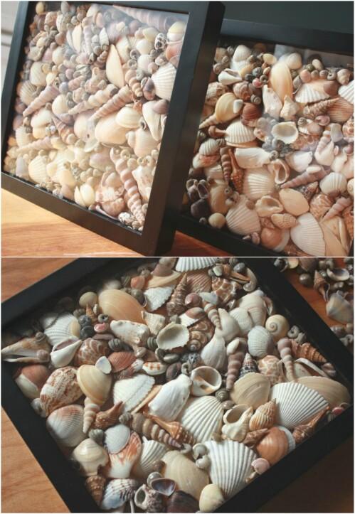 diy Seashells 4