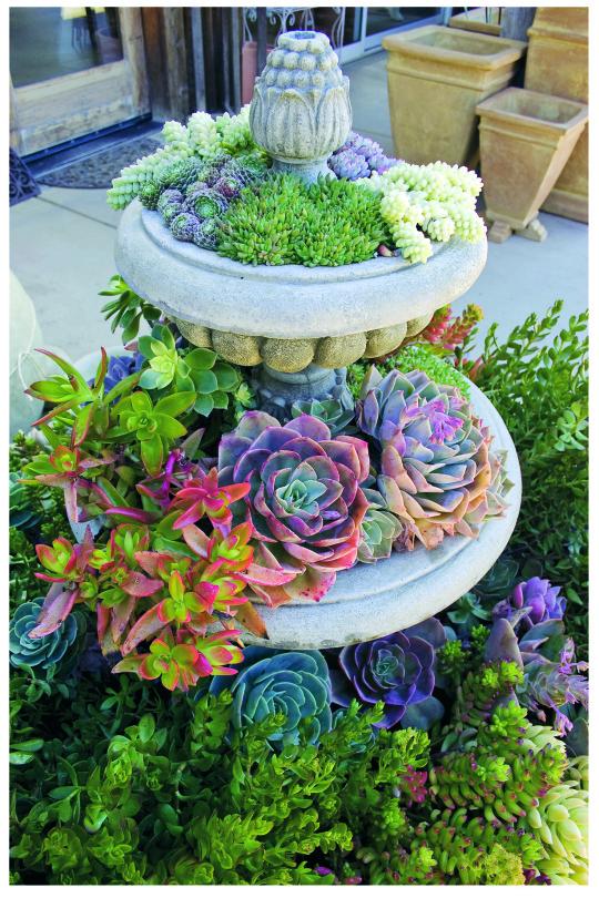 diy garden ideas 4