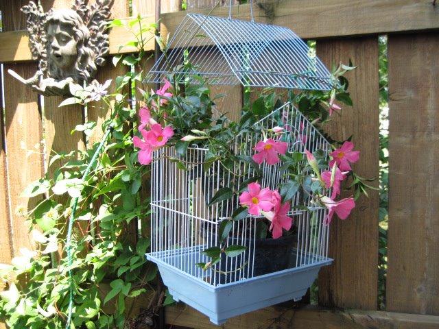 diy garden ideas 7