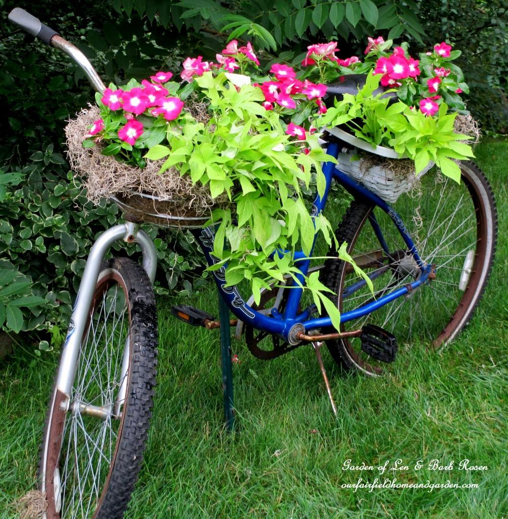 diy garden ideas 9