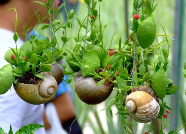 diy home garden ideas 5