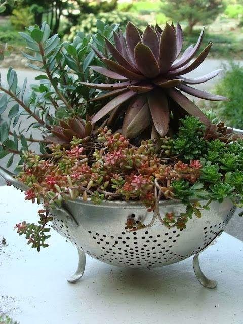 diy home garden ideas 7