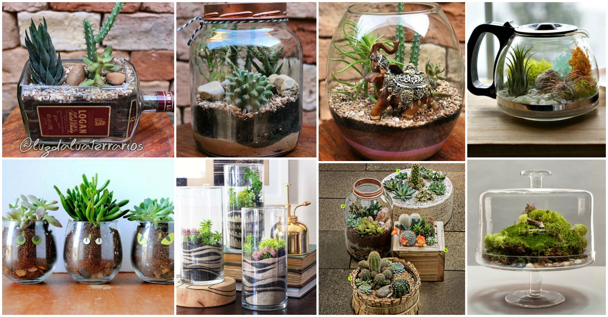 terrarium craft ideas 15 cool and creative terrarium ideas 3066