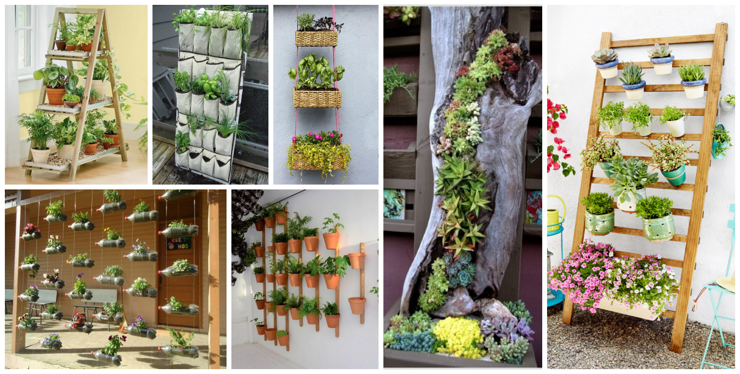 10 diy vertical garden ideas for Garden design ideas rhs