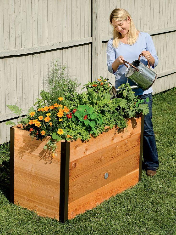 flower beds 11