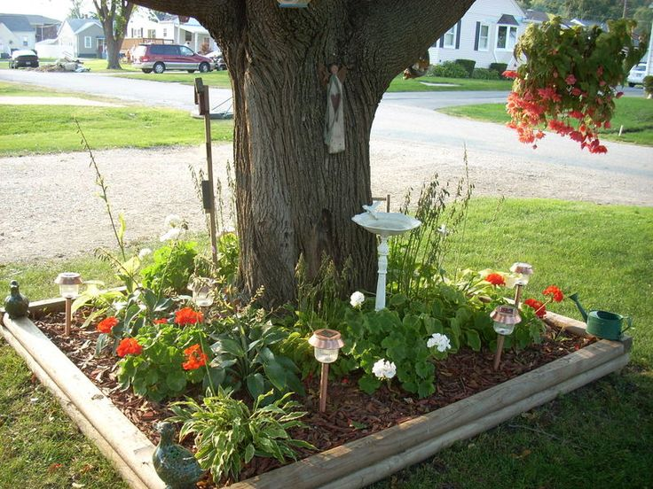 flower beds around tree 11