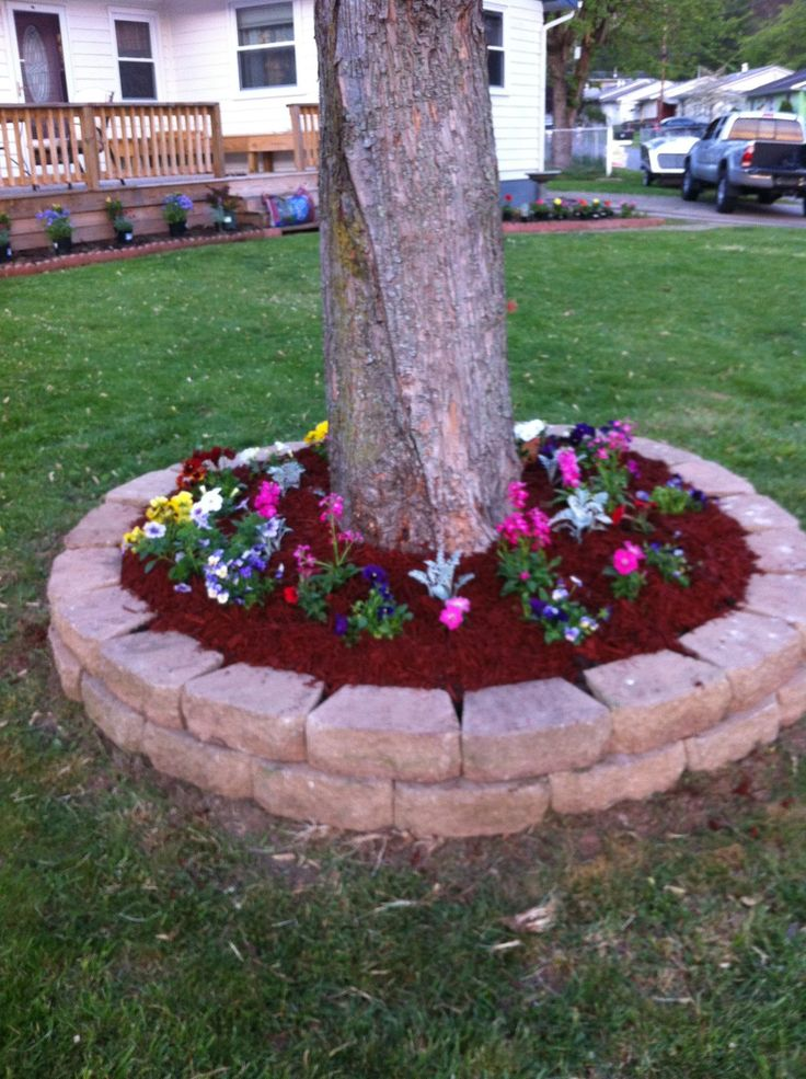 flower beds around tree 3