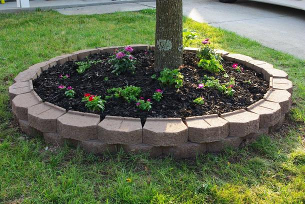 flower beds around tree 4